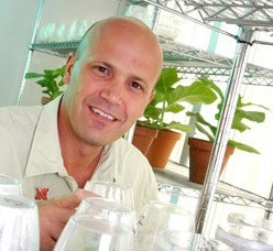 Jim Alfano