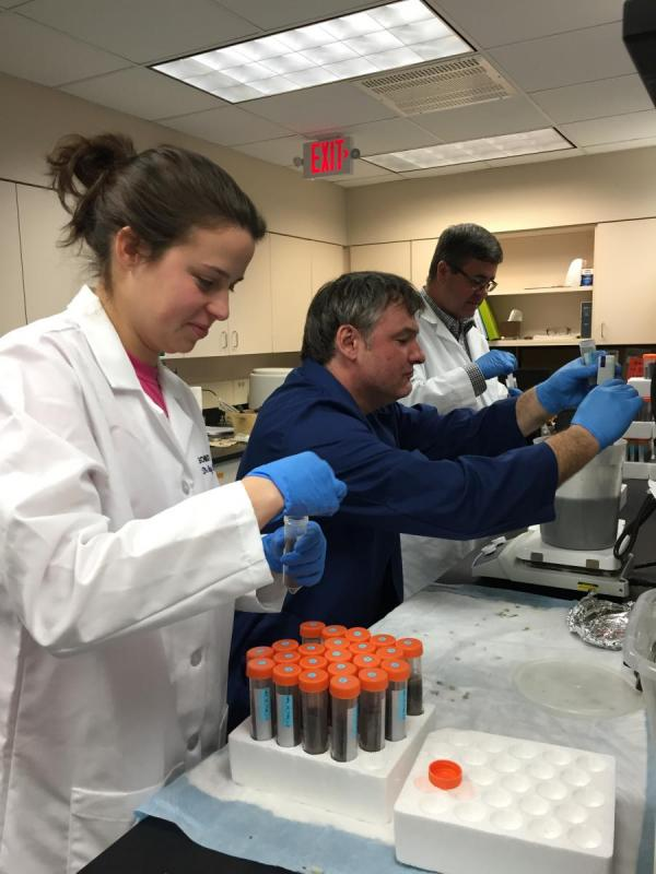 UNL research aimed at improving swine disease control