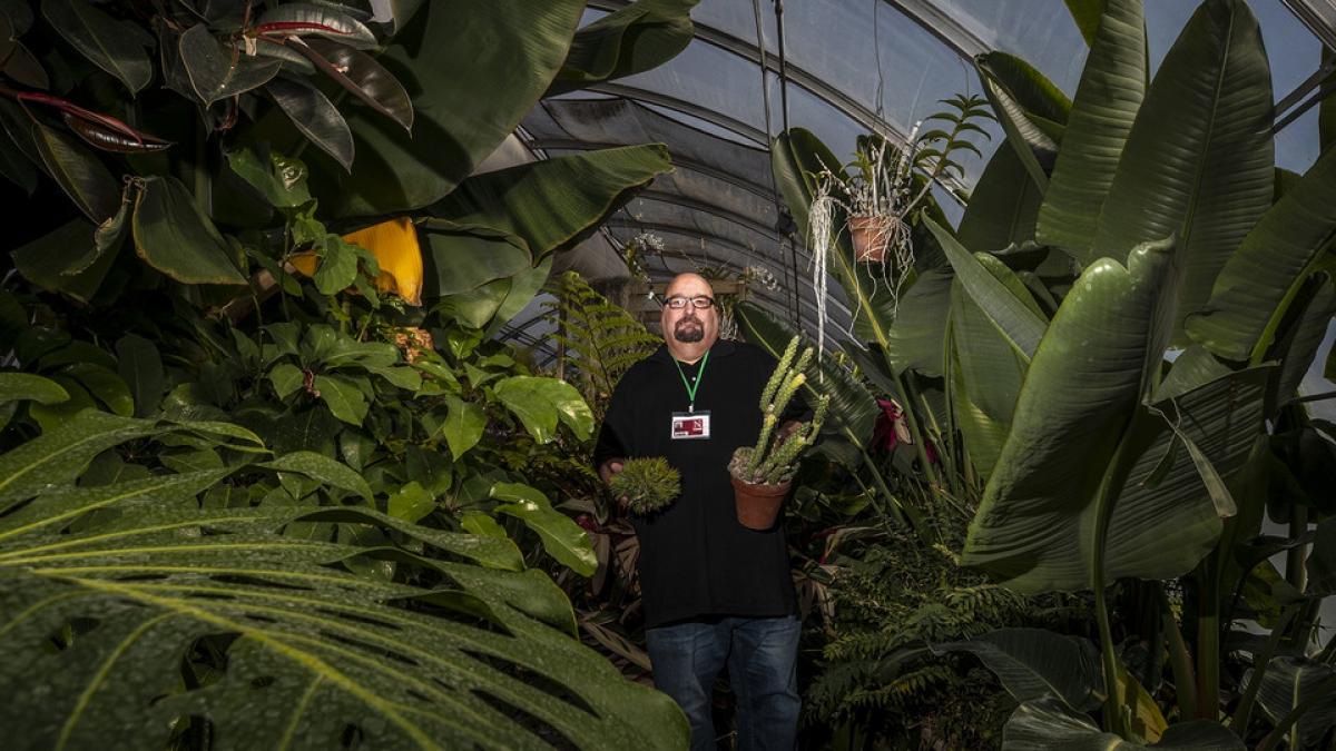 Jeff Witkowski in greenhouse