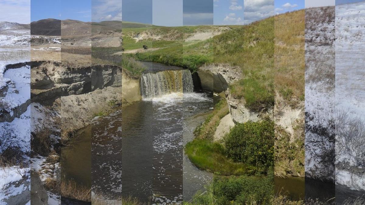 lanscape collage
