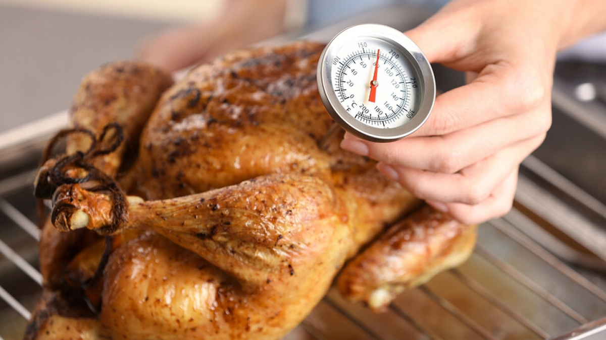 turkey with a meat thermometer
