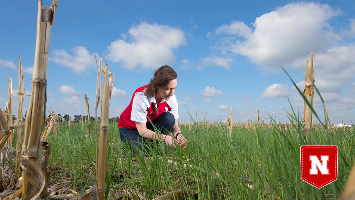 woman kneeling in field