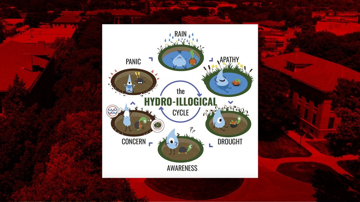 Hydro-Illogical Cycle