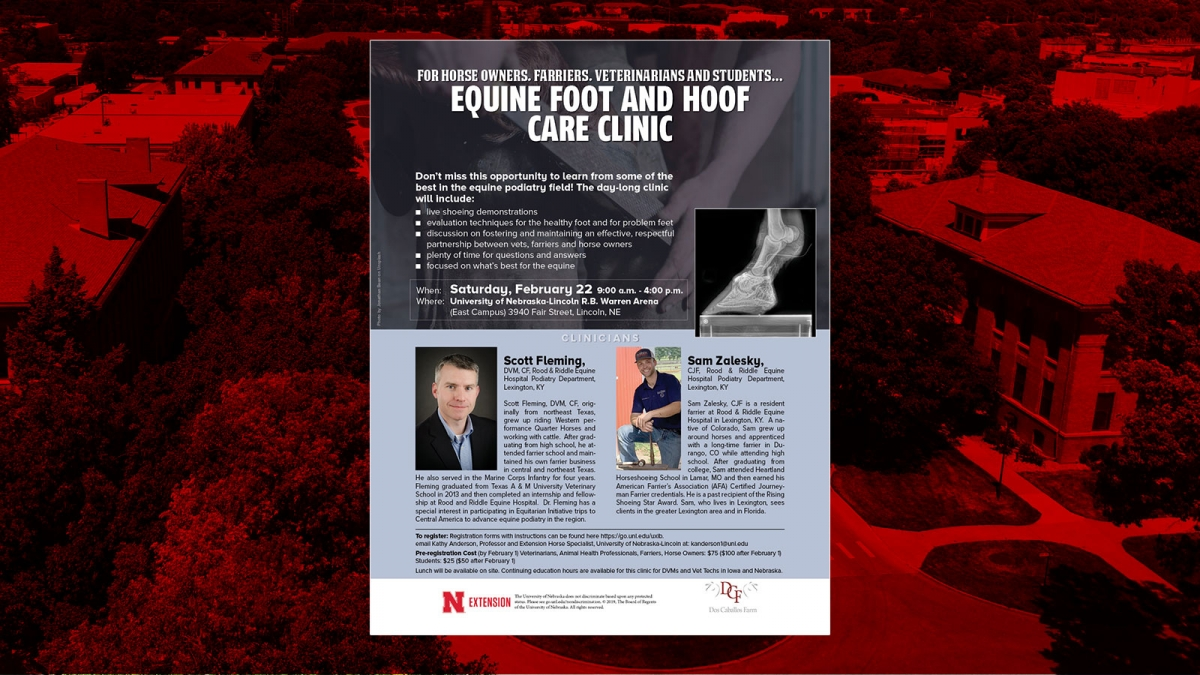 equine foot and hoof care clinic flyer. Includes information in text below.