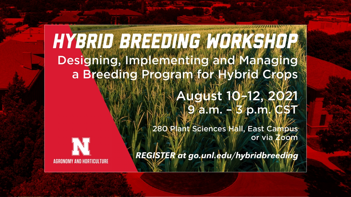 Implementing and Managing a Breeding Program for Hybrid Crops