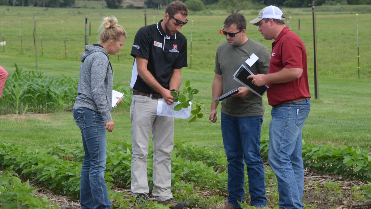 Midwest corn production clinic