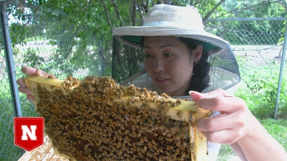 Judy Wu-Smart