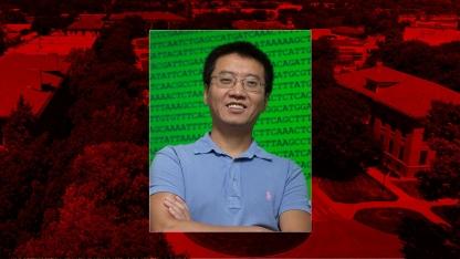Yanbin Yin