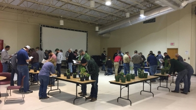 Crop Scout Training