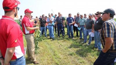 Soybean Management Field Days