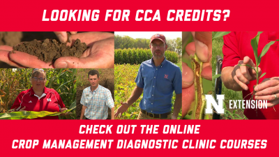 Looking for CCA Credits? Check out the online crop management diagnostic clinic courses.