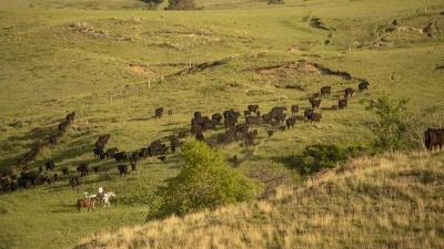 Ranch Drought Monitoring