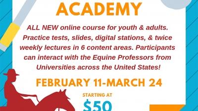 Hippology Academy Flyer.