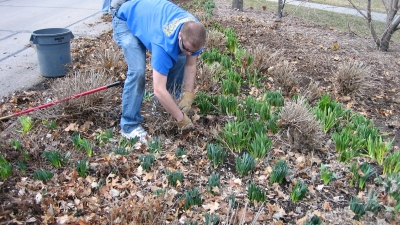 Gardeners clearing a plot