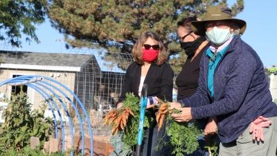 Extension Educator Tammie Ostdiek and Extension Master Gardeners Carol Knaub and Tina Luz