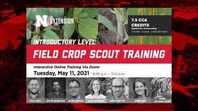 field scout training