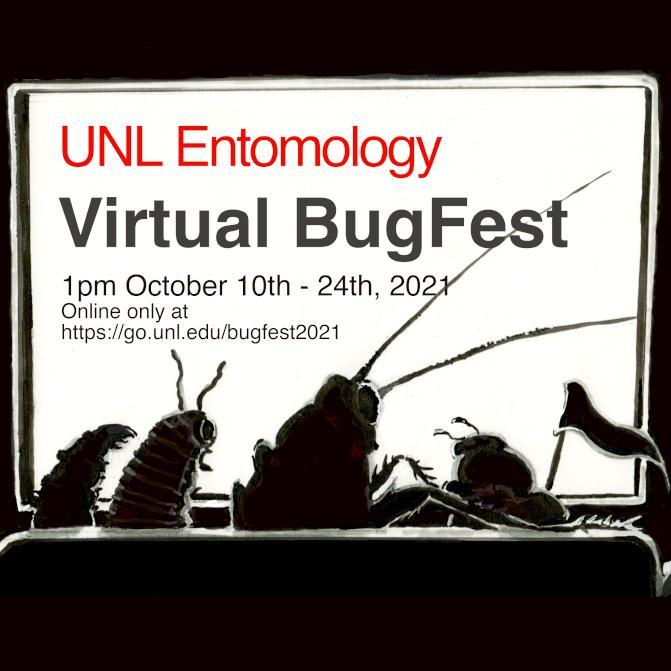 Virtual BugFest Flyer