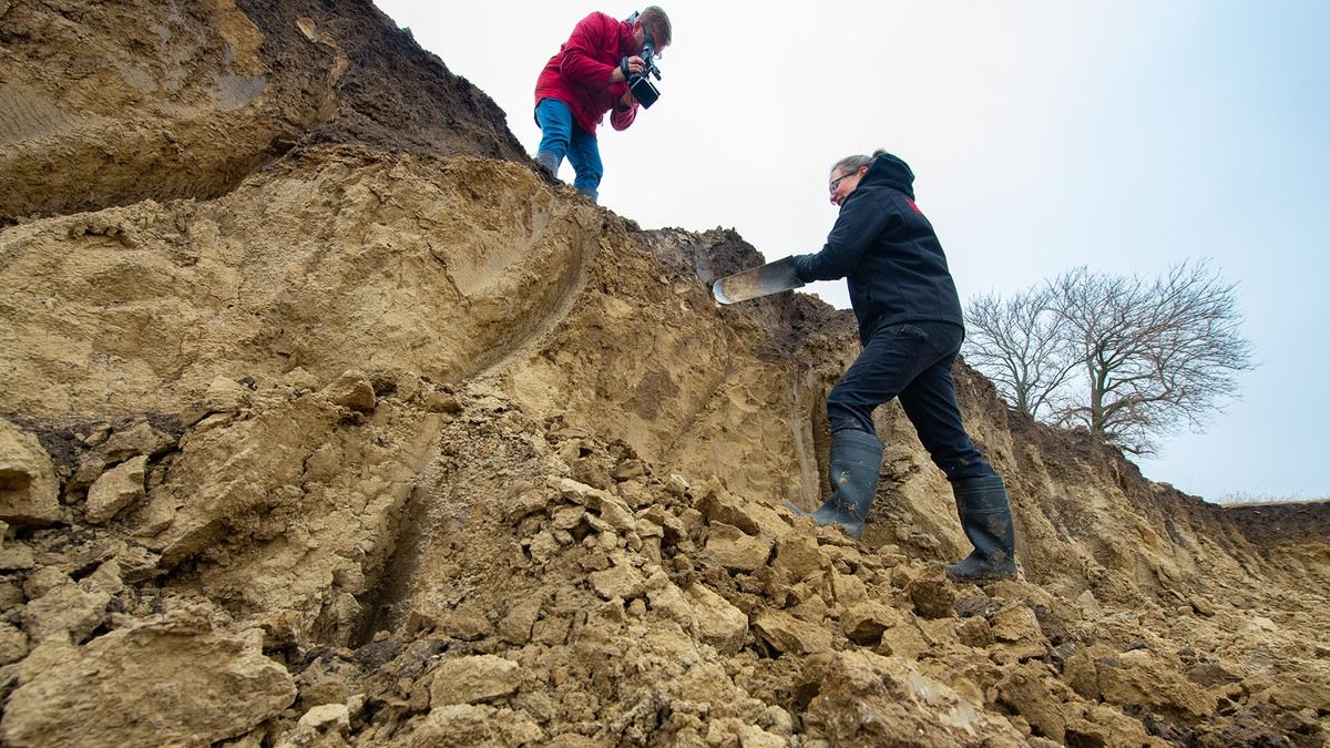 soil virtual class