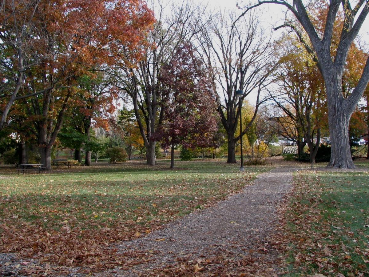Maxwell Arboretum